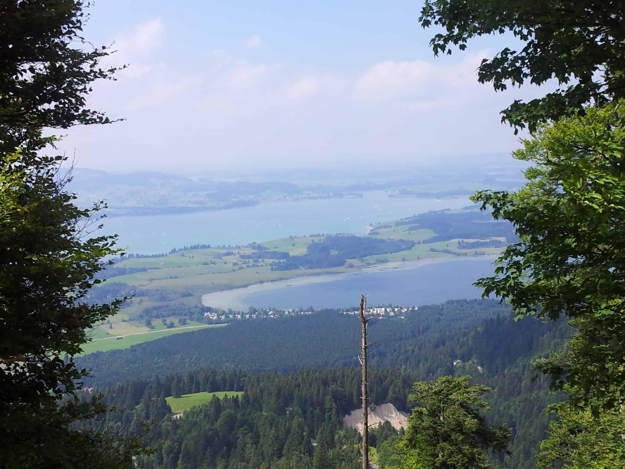 Blick auf den Bannwaldsee und den Forggensee vom Aufstieg von der Drehhütte auf den Tegelberg