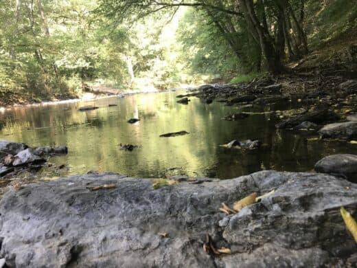 Wandern an der Our auf der Route 2 der Tour Nat'our im Naturwanderpark