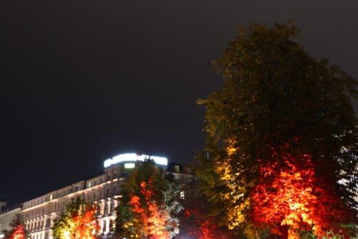 Beleuchtete Bäume am Schlossplatz Stuttgart während Stuttgart leuchtet 2018