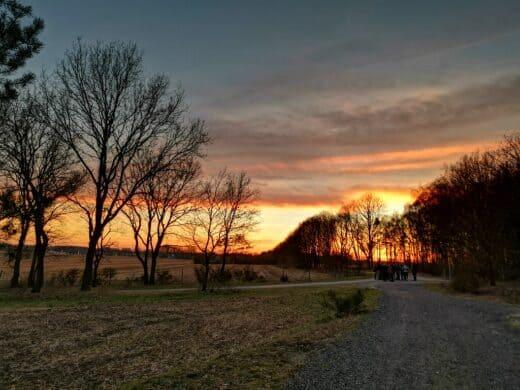 Sonnenuntergang in Niedersachsen beim Kohlwandern