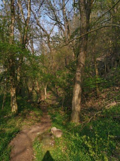 Wanderweg bei Sulzfeld