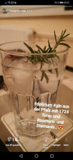 Delirium Gin aus der Pfalz mit 1724 Tonic, Rosmarinzweig und Sternanis