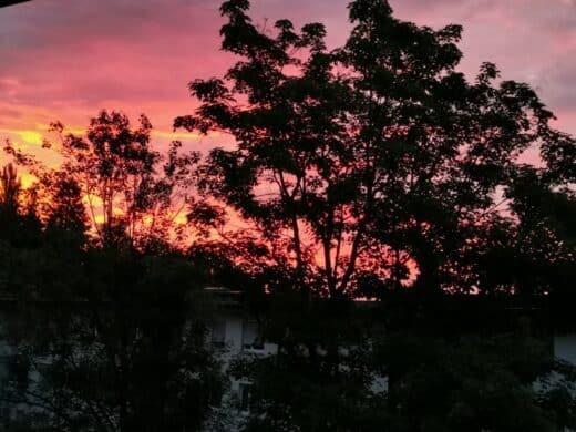 Sonnenaufgang am Mittwoch in Stuttgart vor meinem Balkon
