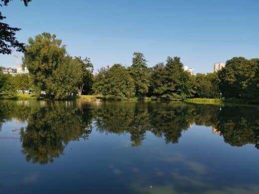 Spiegelungen am Schlossgartensee