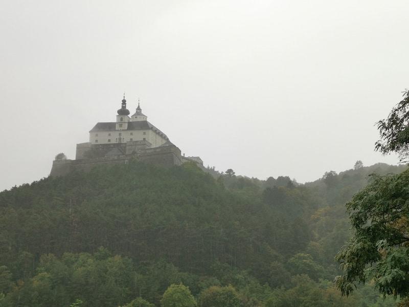 Die Burg Forchtenstein mystisch im Regen/Nebel