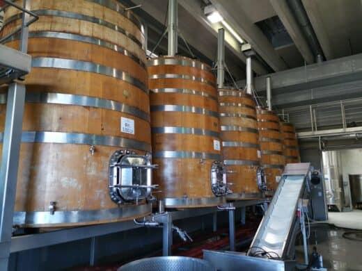 Holzfassgärung einiger Weine im Weingut Esterhazy