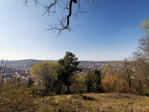 Ausblick über Stuttgart an der Schillereiche