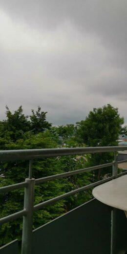 Grau in grau am Donnerstagmorgen auf dem Balkon