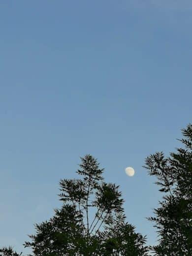 Dem Mond zuschauen und Podcasts hören nachts auf dem Balkon
