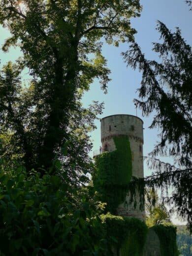 Turm der Burgruine Hohennagold