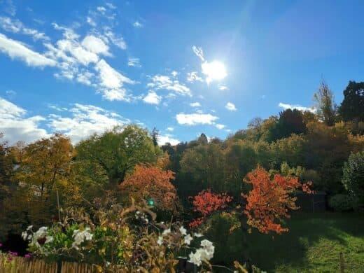 Was für ein herrlicher Sonnentag Ende Oktober