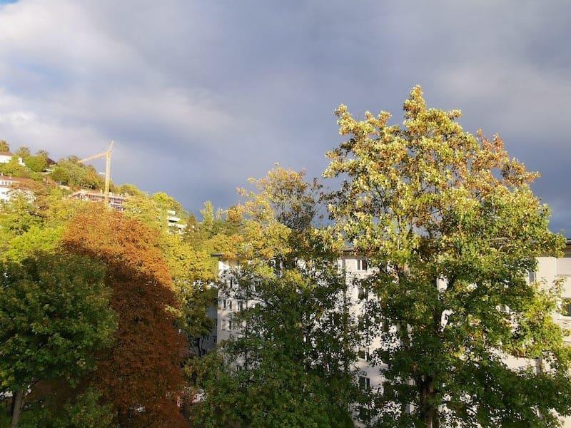 Farbenpracht am frühen Abend