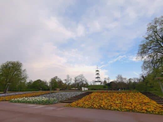 Blütenpracht und Killesbergturm im Höhenpark