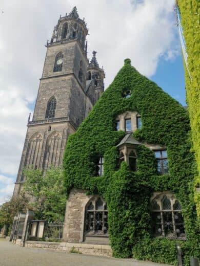 Der Dom von Magdeburg von der anderen Seite