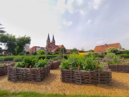 Hochbeete im Klostergarten Jerichow